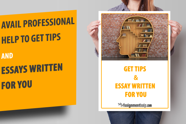 Essay introduction steps