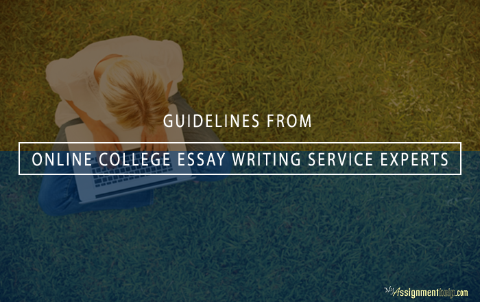 College essay writing assignement guidelines